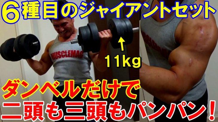 【筋トレ】ダンベルだけで腕のジャイアントセット!6種目で二頭筋と三頭筋がパンパンに張った時短トレーニング