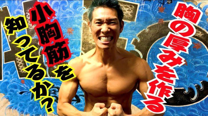 【筋トレ】胸の厚みを作るトレーニング「ダンベルプルオーバー」カッコいい胸板を作る為には実はこの筋肉を鍛えなければいけない!小胸筋フォー!!!