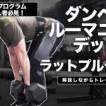 【筋トレ解説ライブ】ダンベルルーマニアンデッドとラットプルを解説しながらトレーニング