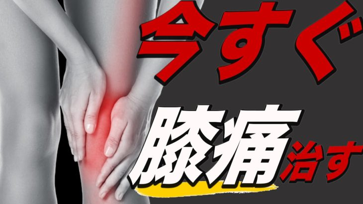 【膝の痛み】ストレッチ,注射,筋トレをしても治らない人が今すぐ治す方法【福岡県福岡市 整体院 福佳-fukka-】