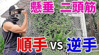 【筋トレ実験!】懸垂の順手と逆手の効果を見よう!