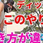 【筋トレ】このディップス………効果にビックリ!