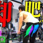 【筋トレ】種目・セット・レップ数はどれがベスト!?  これが脚をデカくするメニューだ!!!