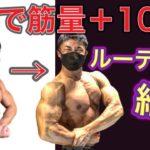 【2年で筋量10kg増】筋トレルーティン紹介【ナチュラル】