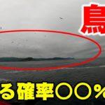 【筋トレ】ショアジギングは難しい!?青物が釣れる確率は○○%