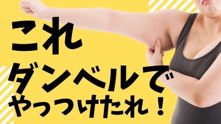 クッション&ダンベル使用 腕を引き締めるダンベル筋トレ!4分4種目!中級