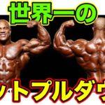 世界一の男フィルヒースのラットプルダウン【筋トレ】
