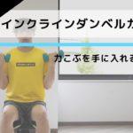 引き締まった腕、たくましい力こぶを手に入れる筋トレ「インクラインダンベルカール」の正しいやり方【10回×3セット】