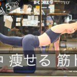 背中痩せ 背筋 背中 筋トレ 【ドS Level 5/5】