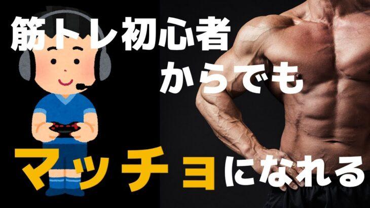 全く運動したことが無い初心者でもできる筋トレ【腹筋・胸筋】