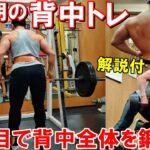 【筋トレ】増量期の背中のトレーニングで重量更新に挑戦!4種目で広背筋や僧帽筋を鍛えました【解説付】