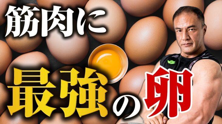 筋トレしている方必見!筋肉をつけるために最適な卵の食べ方とは【筋トレ飯】