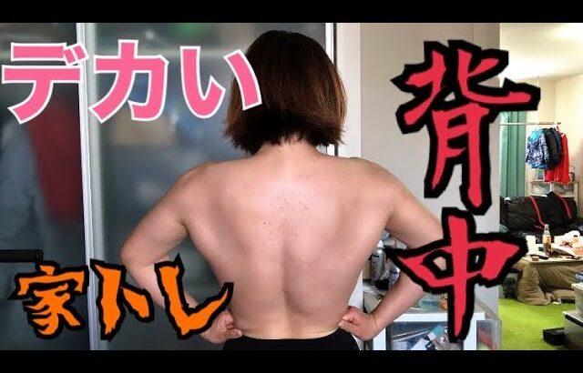【筋トレ女子】デカい背中をお家で作る!!【背中トレ】