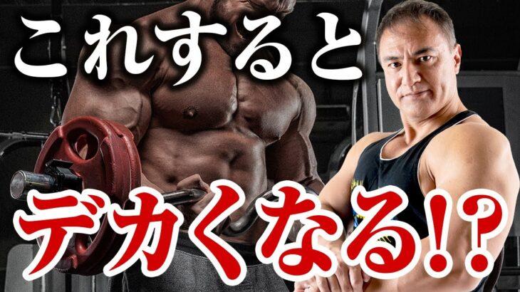 【筋トレ】筋トレを始めて半年ほど経った人が筋肉をさらにつけるために意識して欲しいことがこれです【初心者】