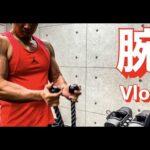 【筋トレ】とある日の、減量中腕トレ【vlog】