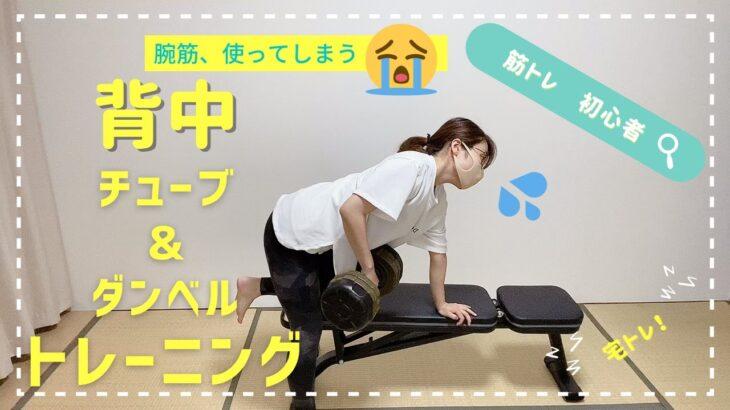 【筋トレ初心者】ダンベルローイング背中動かん(背中、チューブ&ダンベルトレーニング)