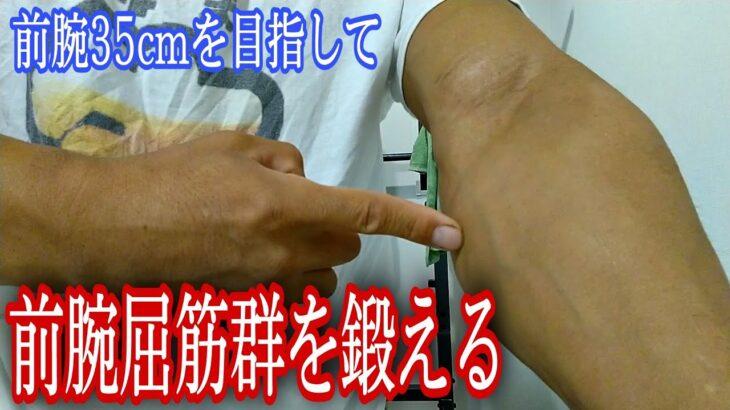 前腕屈筋群を太くする筋トレ【前腕35cmを目指す】