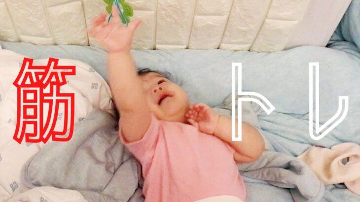 8ヶ月の娘が筋トレに励んでいました