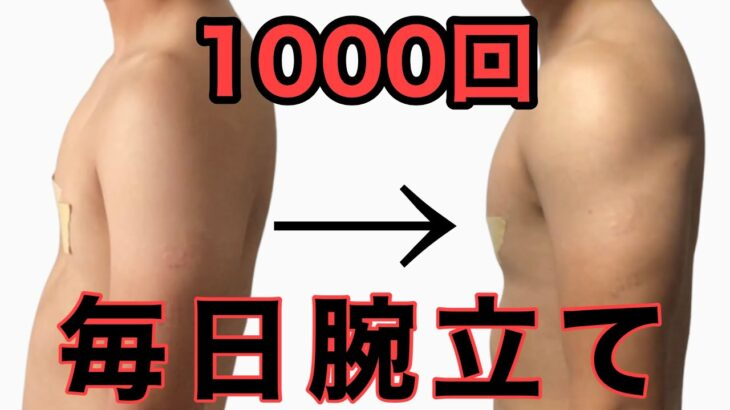 【筋トレ】毎日腕立て100回やったらどーなんの?1000回目