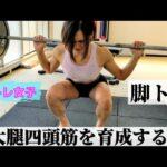 【筋トレ女子】ゆるり女の脚の育成トレーニング【大腿四頭筋】ホームトレーニー、流し見、モチベーション